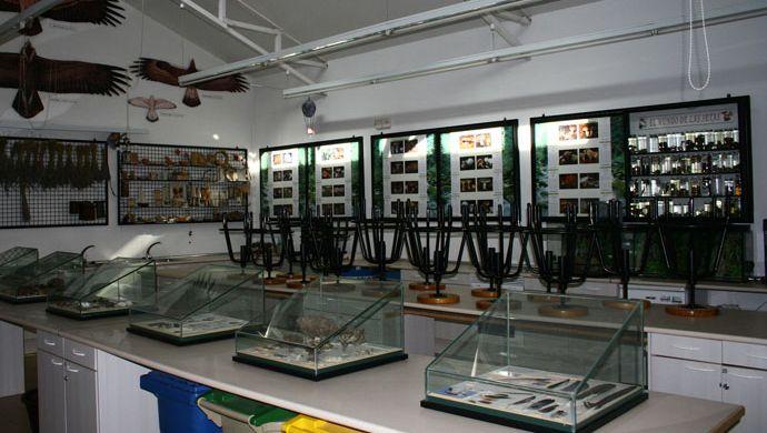 Classe du Centre de Nature « Dehesa Boyal » (Mairie de San Sebastian de los Reyes)