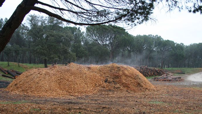 Use of waste for use as biomass