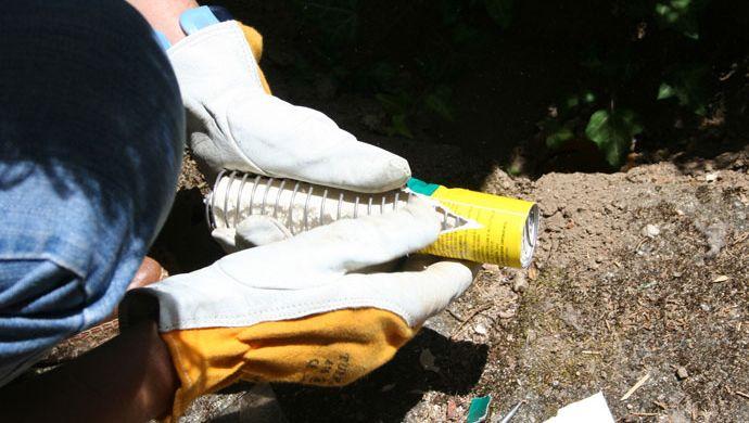 Colocación de cebo para termitas